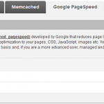 PageSpeed Interface