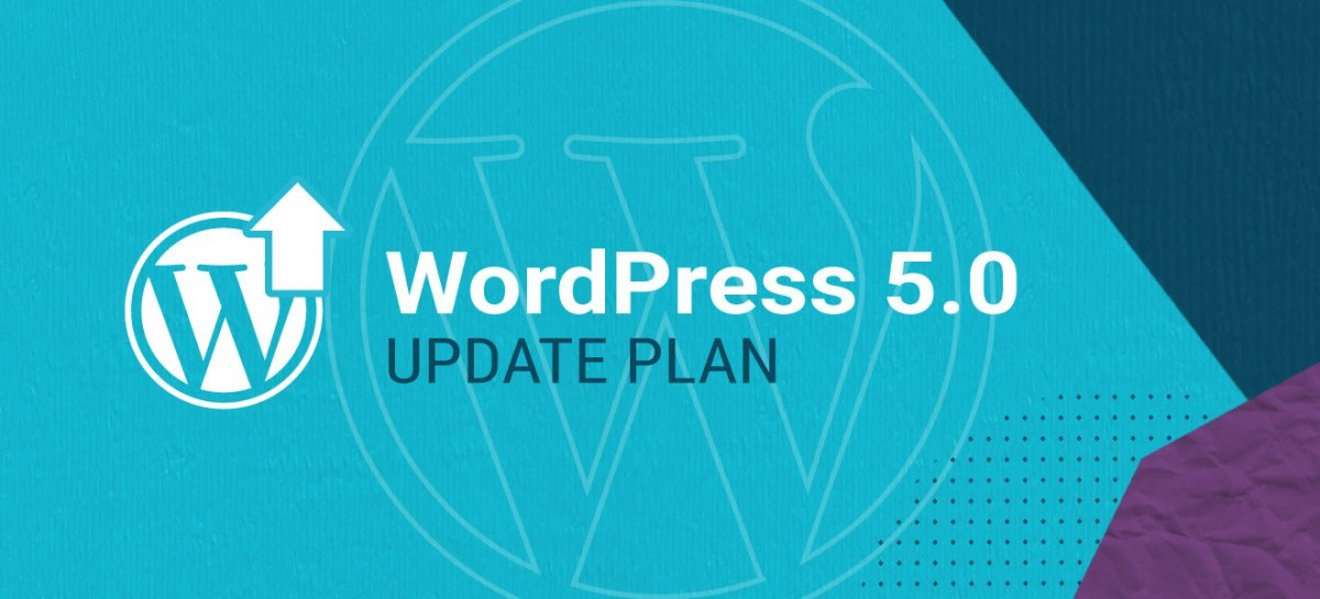 WordPress 5.0 Update Plan