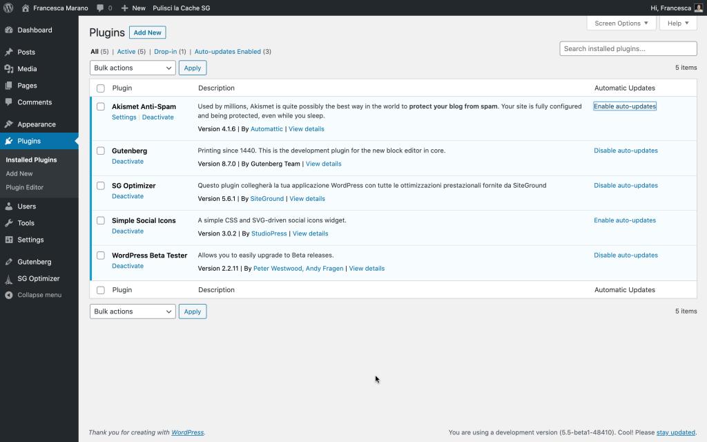plugin auto-update in WordPress 5.5
