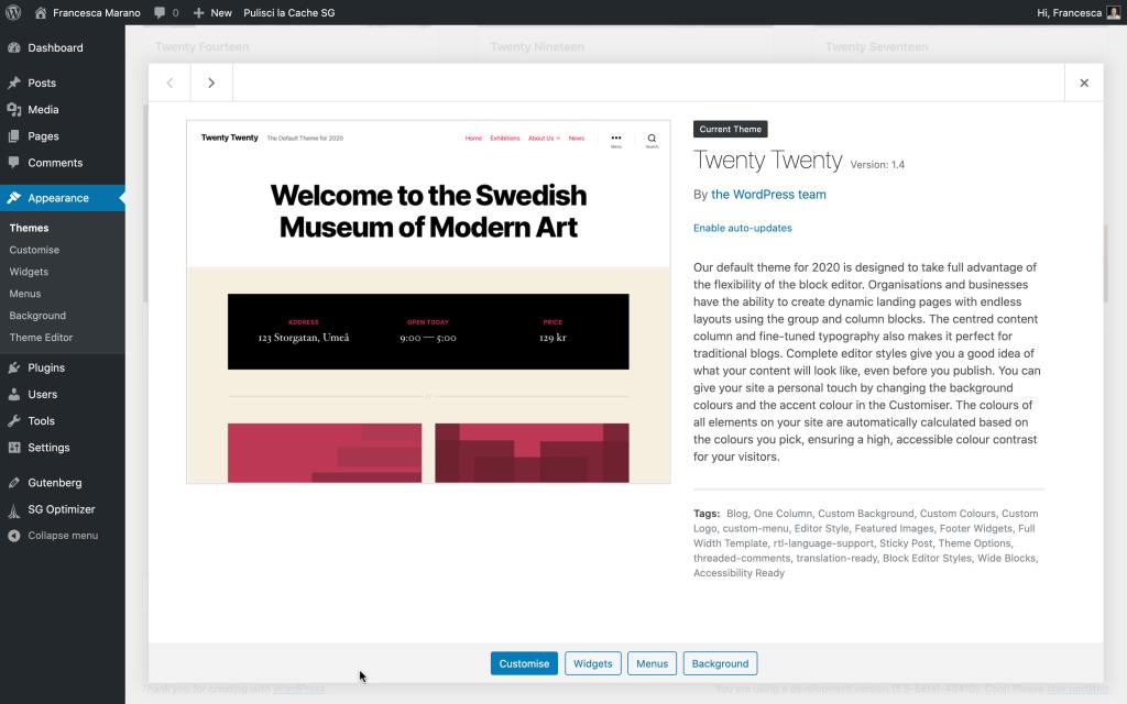 theme auto-update in WordPress 5.5